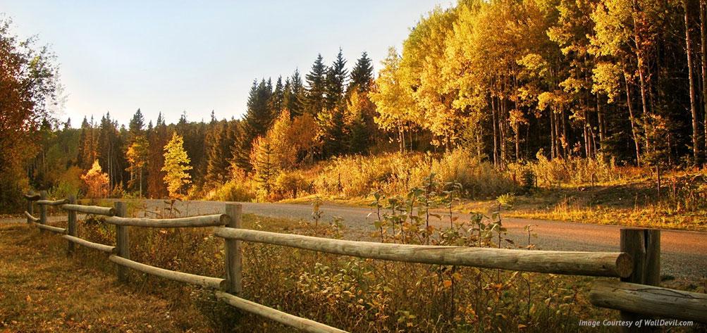 11-ways-to-enjoy-fall-in-boerne-tx