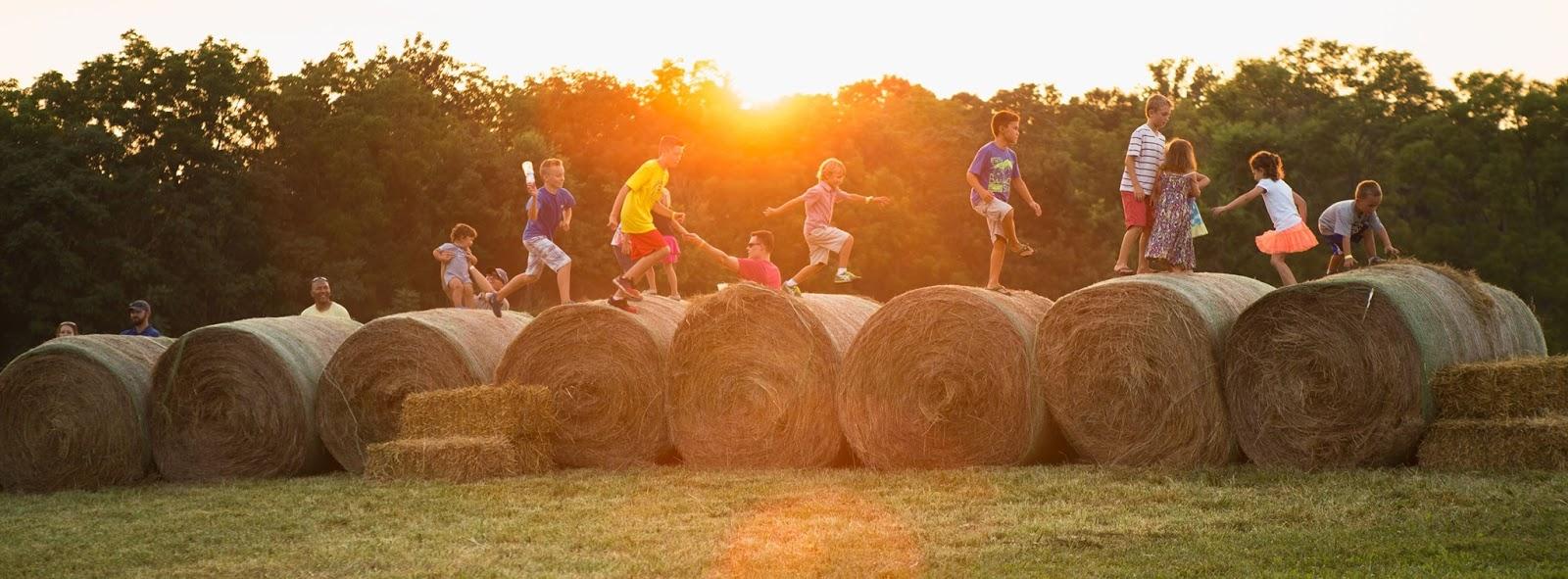 foxhollow-farm-fall-festival-crestwood-ky